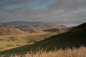 The headlands on the coast near Waimarama.